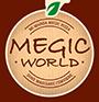 Logo MegicWorld